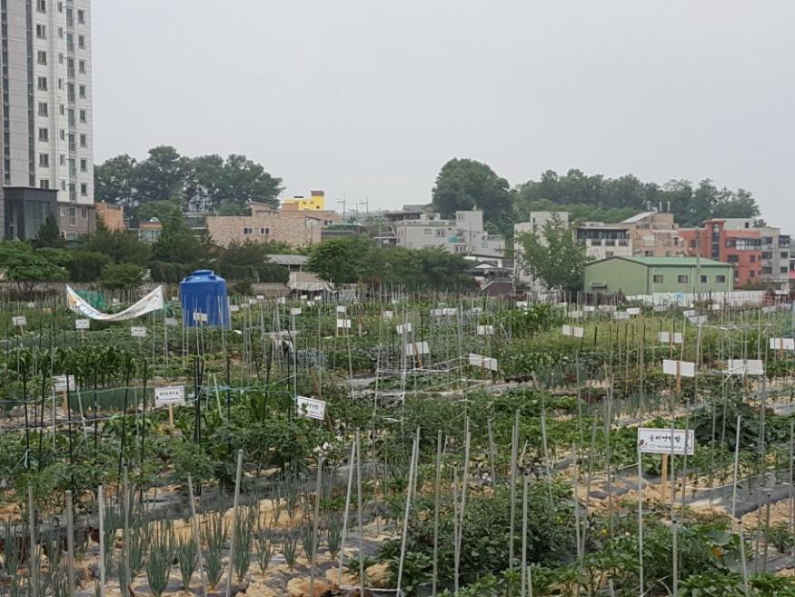 도시농장 텃밭가꾸기 이용자 모집.jpg