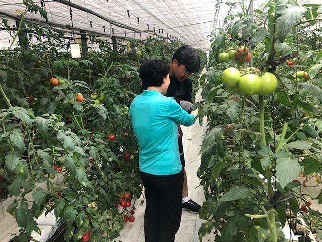 신규농업인 현장실습교육.jpg